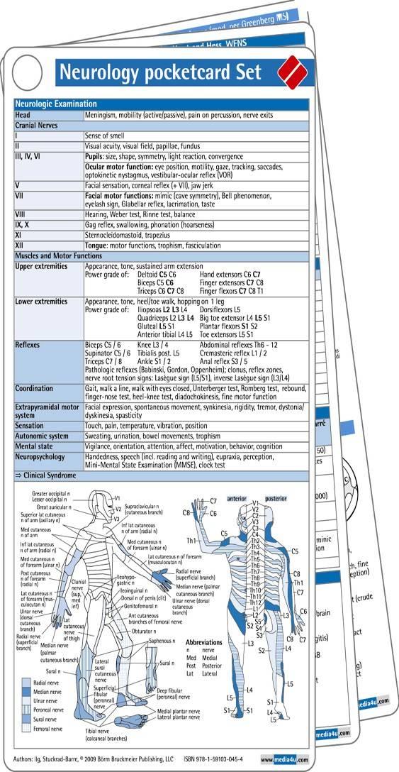 Neurology pocketcard Set By Ilg, Ruediger/ Stuckrad-barre, Sebastian